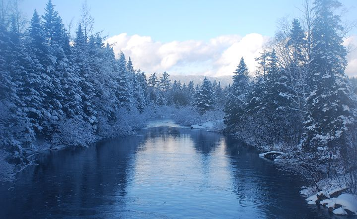 Roach Riverin Kokadjo during winter